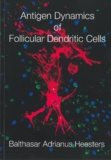 Thesis cover: Antigen dynamics of follicular dendritic cells